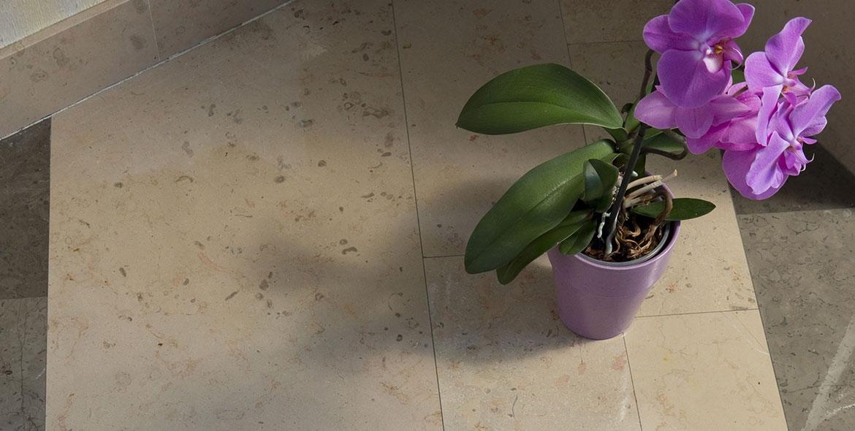 Honed Comblanchien flooring
