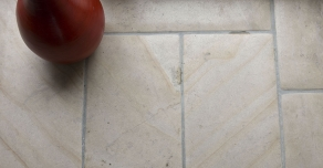Ancient flagstones made with Beaunotte stone
